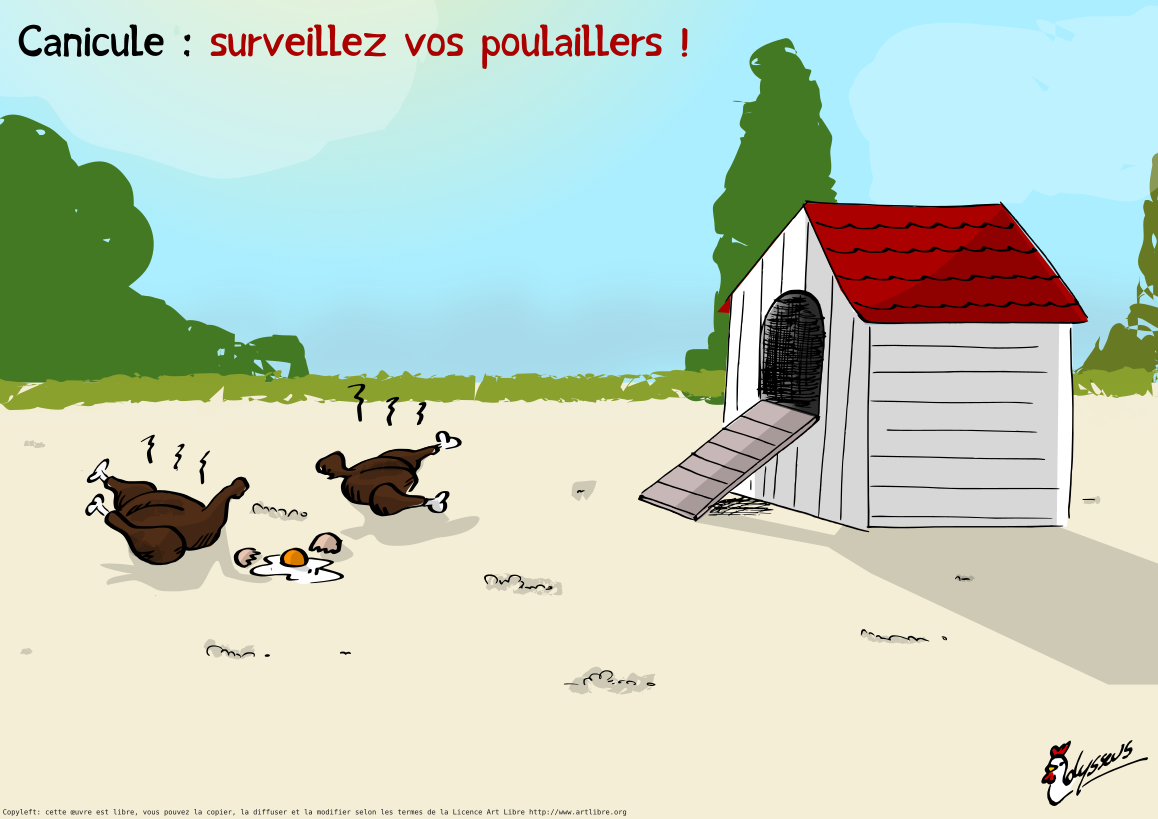 Canicule : attention !